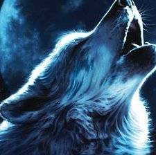 lonewolf7583